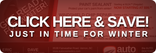 save on paint sealant, windshield chips, paint chip touchups vernon bc